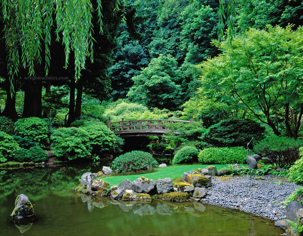 Japanese garden design incorporating a path of stepping for Japanese garden pond design