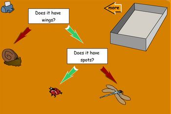 Branching tree diagram use yesno questions to sort the branching tree diagram use yesno questions to sort the minibeasts ccuart Choice Image