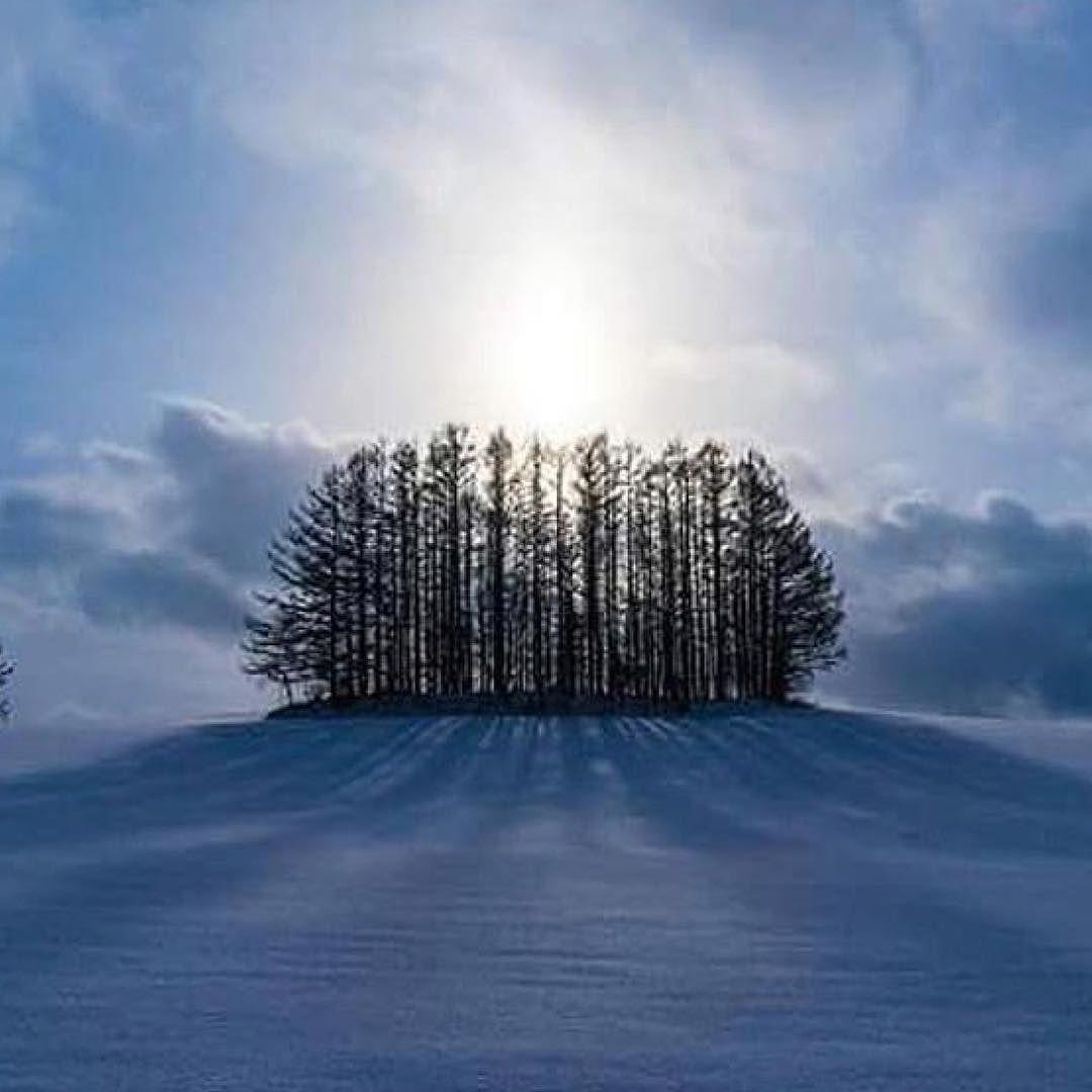 #Repost @edaccessible:Photo by Shun-Komai Photography via Andrés F. Silva Arancibia  #winter #cold #holidays #TagsForLikes #snow #rain #christmas #snowing #blizzard #snowflakes #wintertime #staywarm #cloudy #instawinter #instagood #holidayseason #photooftheday #season #seasons #nature #trees #sunset #seashore #sunrise