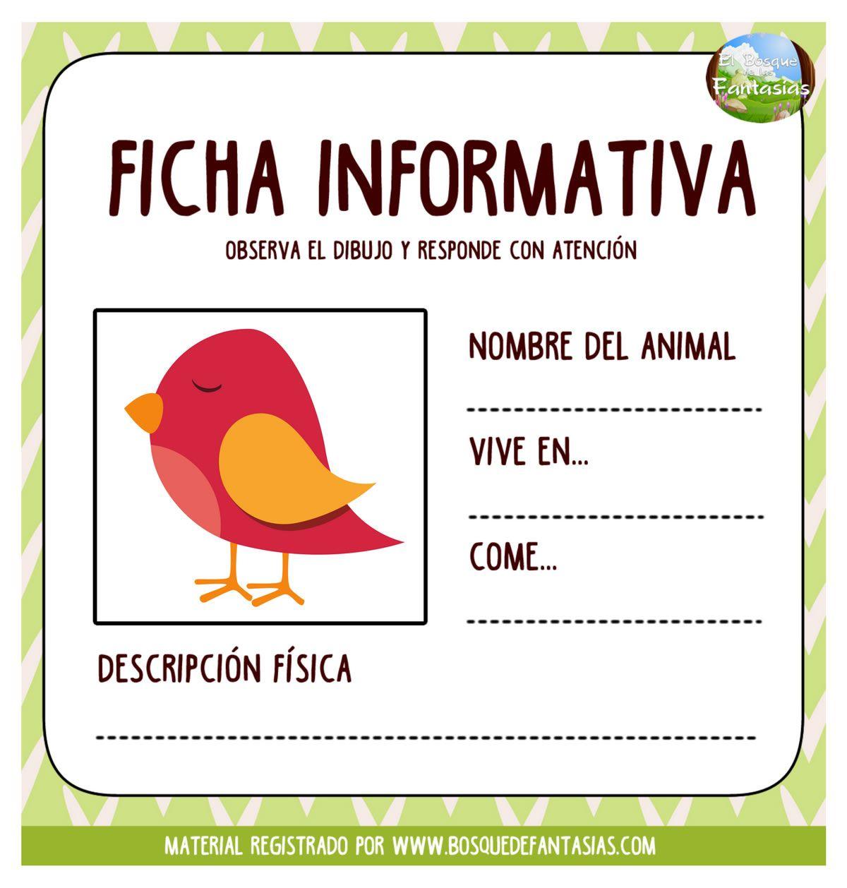 Fichas Informativas De Animales Nombre Y Caracteristicas