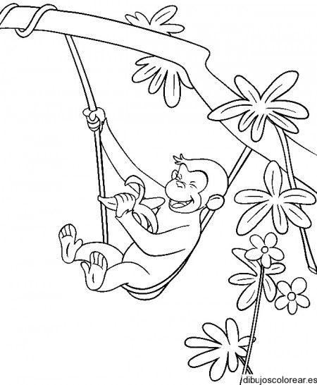 Dibujo de un mono en una liana | colorear | Pinterest | Dibujos de ...