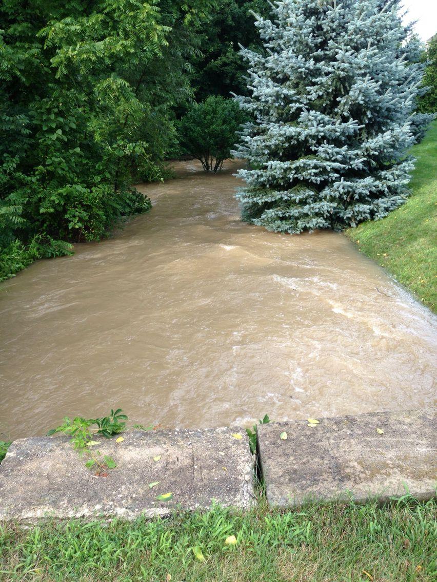 my backyard creek after heavy rain ohio buckeye pinterest