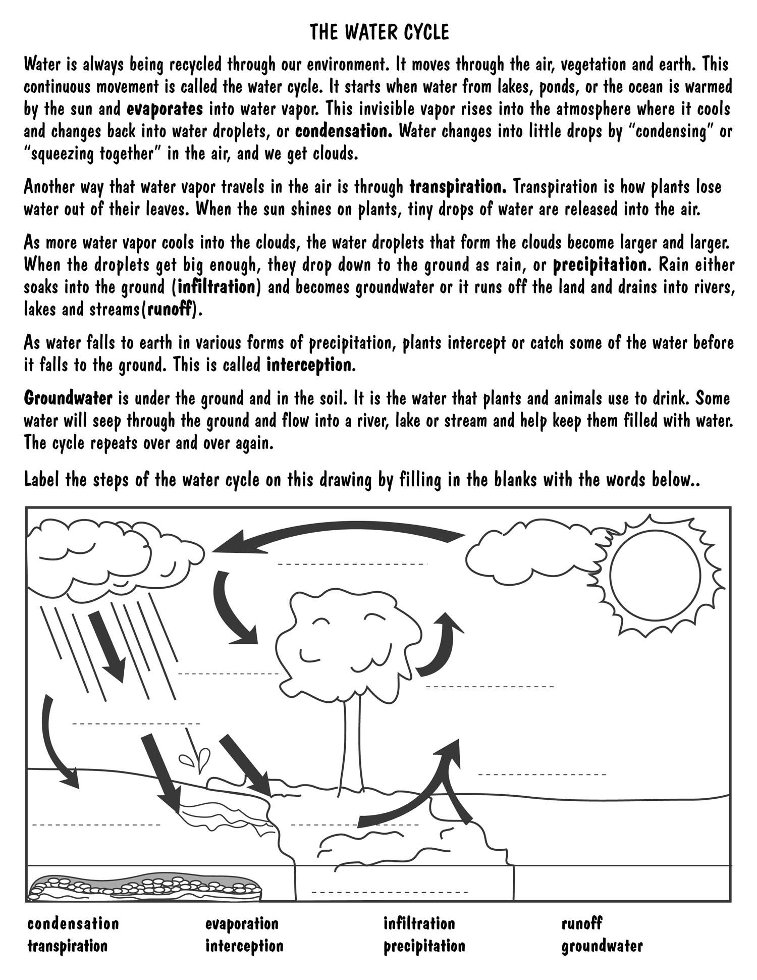 Water Cycle Diagram For Kids To Label