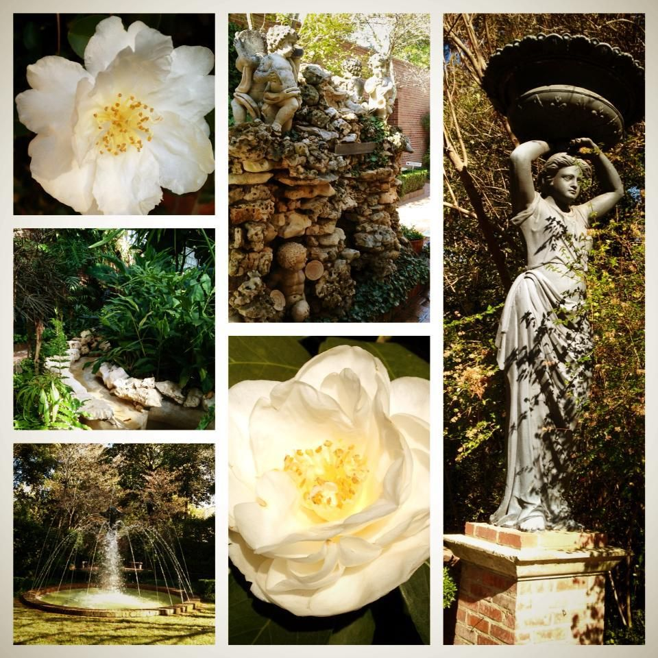 Various scenes from the gardens at the biedenharn museum and gardens in monroe la designed by for The gardens at monroe