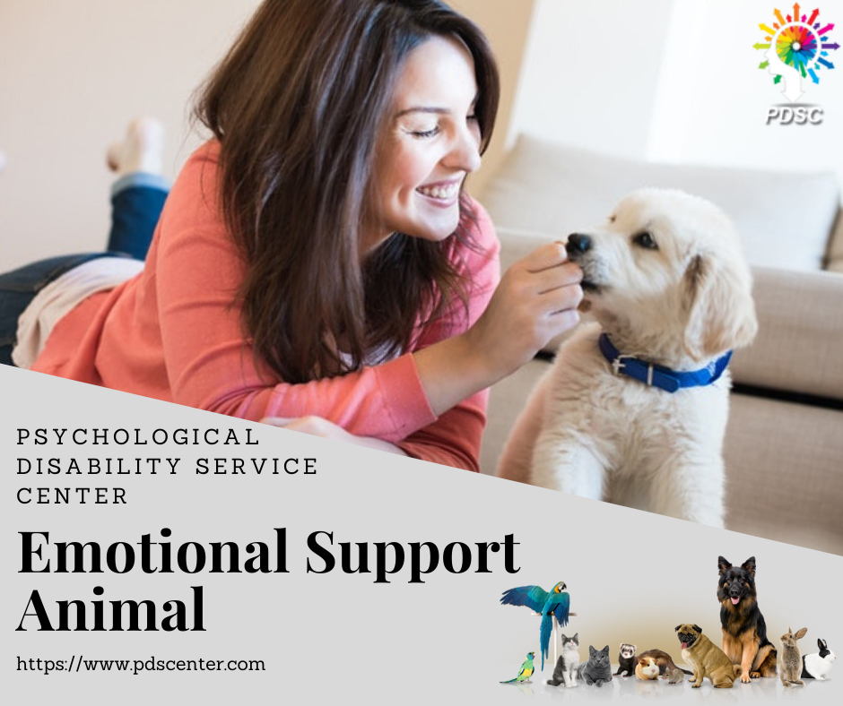 Pin by PDS Center on Emotional support animal in 2020