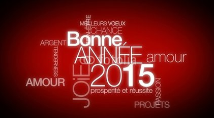 bonne anne new year wishes in french greetings for new year in french