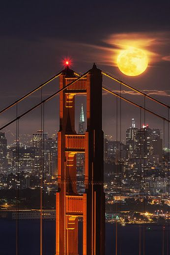 Bridge to the Moon by Willie Huang
