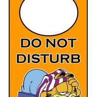 Do Not Disturb Garfield Door Hanger College Survival Kit Garfield Disturbing