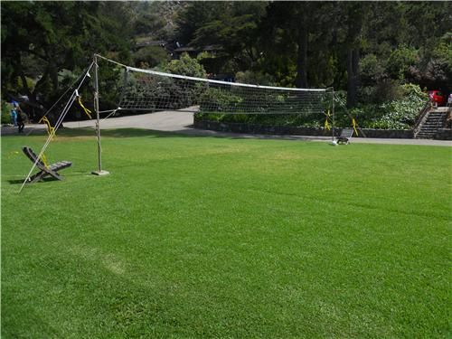 Volleyball Backyard Games Landscaping Network Volleyball Court Backyard Backyard Games Backyard Sports