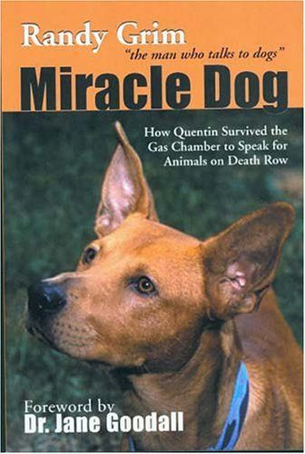 Miracle Dog How Quentin Survived The Gas Chamber To Speak For Animals On Row By Randy Grim Save  10