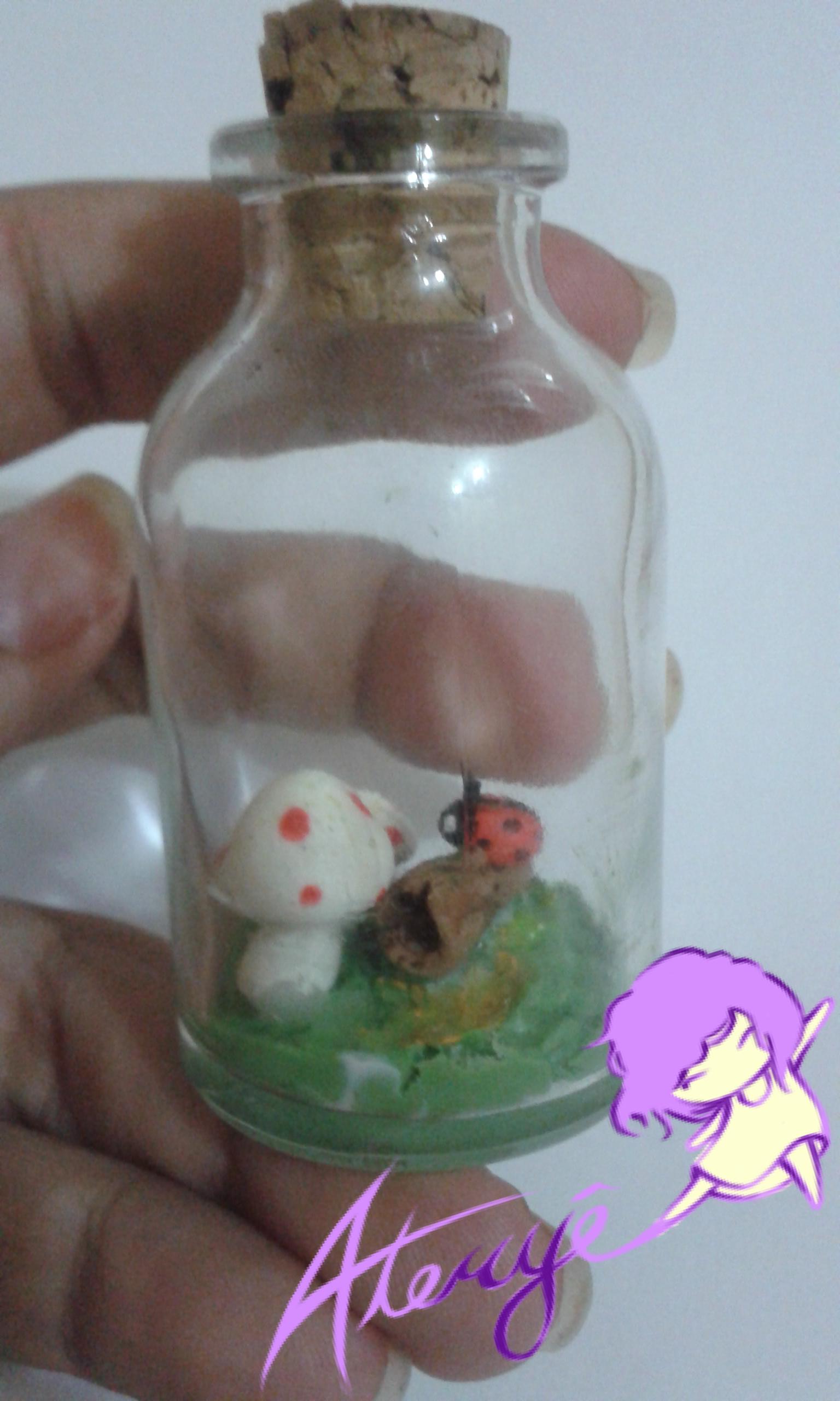 Biscuit na garrafinha! Polymer Clay in a bottle!