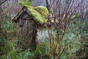 Outhouse, Tofino, British Columbia, Canada