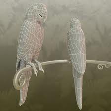 Afbeeldingsresultaat voor parrot model