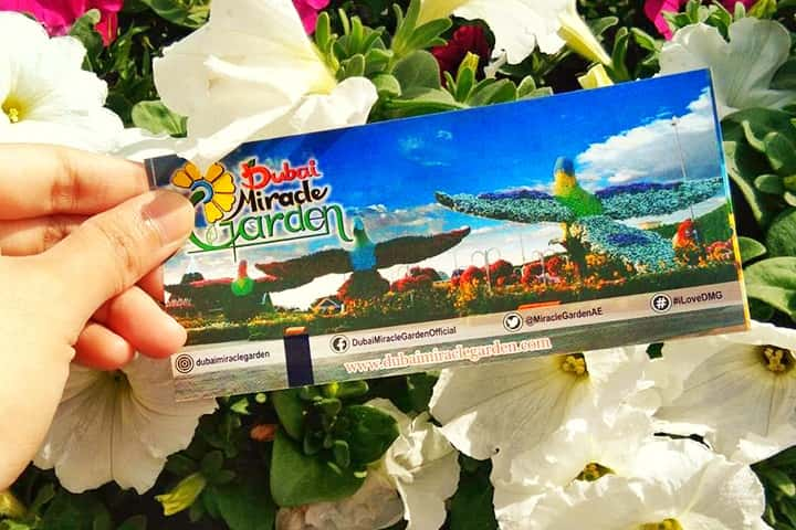 Dubai Miracle Garden's 55 AED ticket price is not only