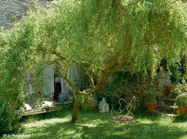 deco jardin sauvage