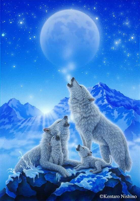 Photo of white wolf family in front of icebergs