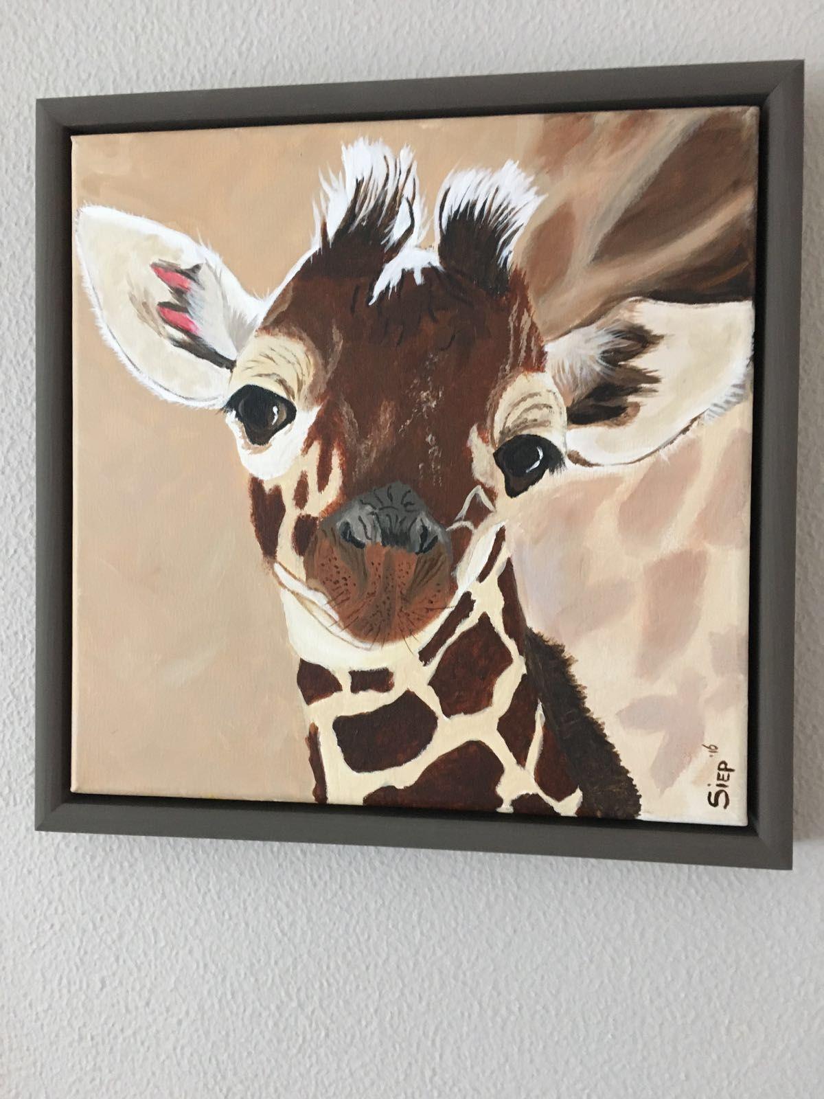 Lola, baby girafje.