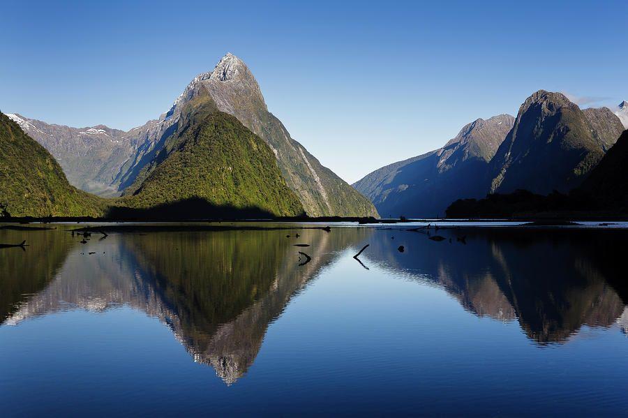 Milford Sound New Zealand   Milford Sound - New Zealand. Photograph