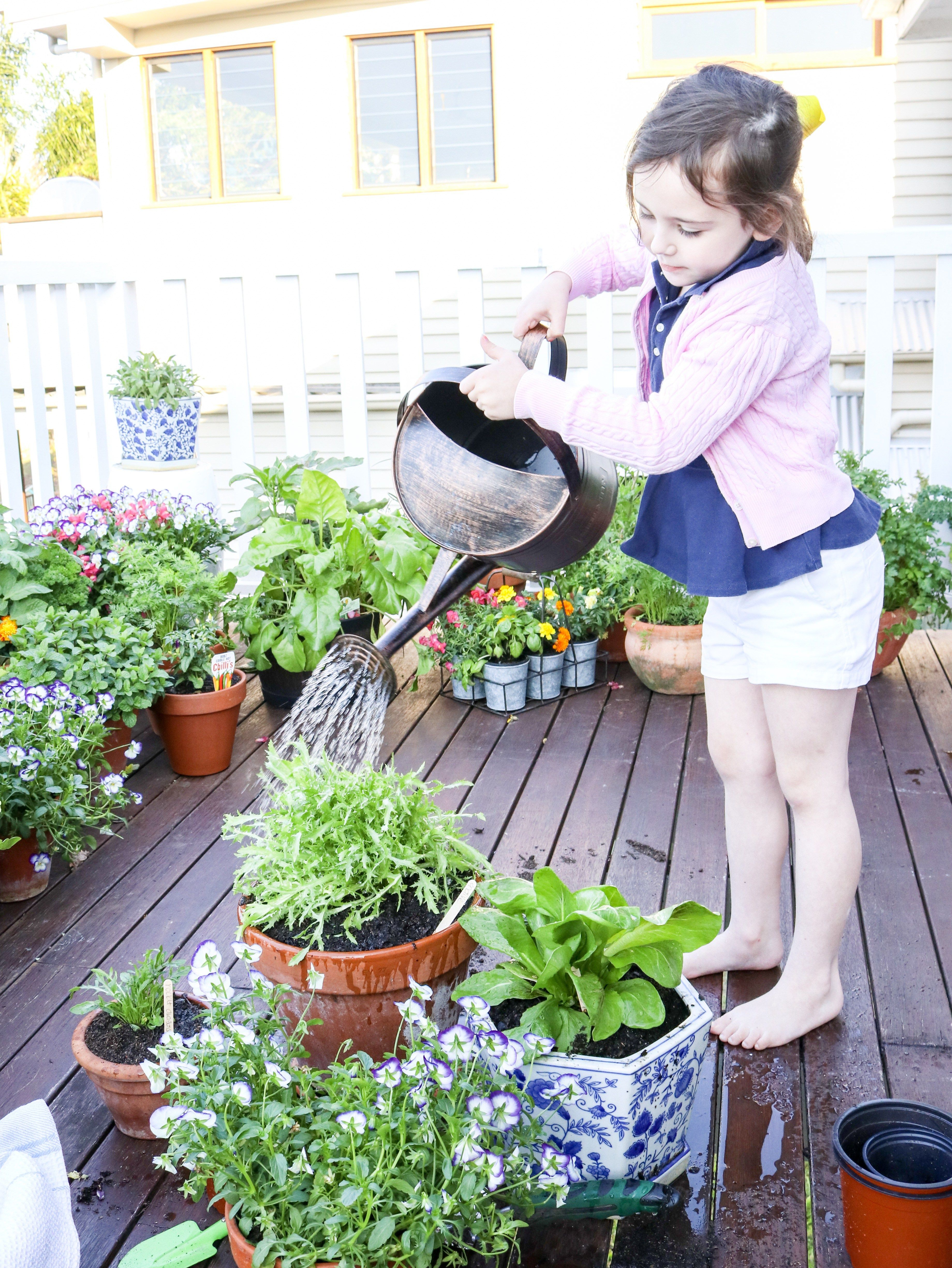 how to grow a kitchen garden in pots with images kitchen garden hydroponic gardening on kitchen garden id=18173