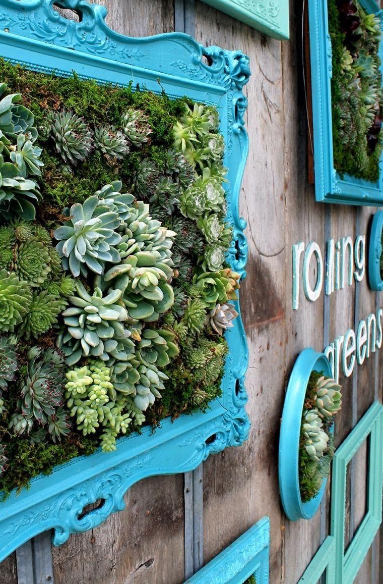 Amazing sukkulentenideen in spektakulären designs succulents