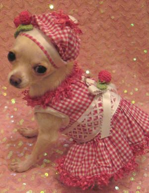 Easter Dress Maybe Toby Will Have A Sister One Day And I Can Sew
