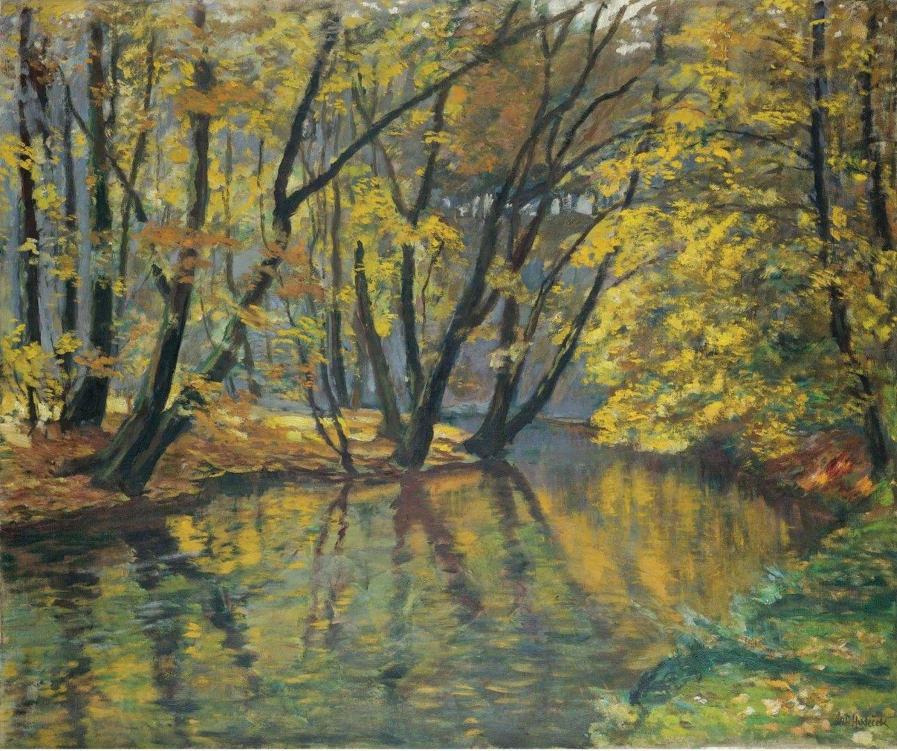 Antonin Hudecek   The Bela Stream In Autumn
