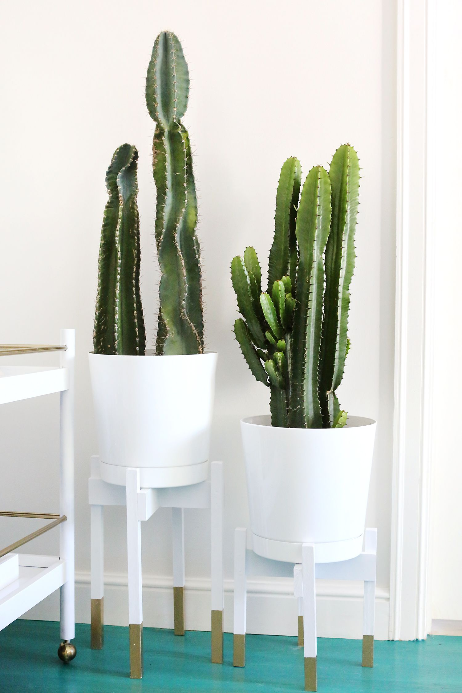 20 DIY Plant Stand Ideas That Make