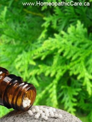 Homeopathic Thuja (Cedar) works well on the skin and genito
