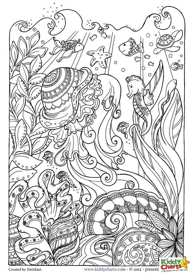 Ocean coloring pages for kids and adults | Pintar y Animales
