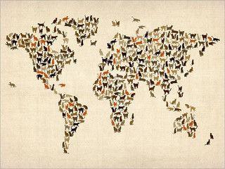 unique world map