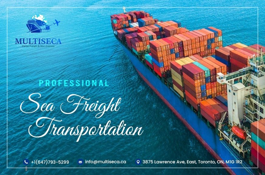We here at MultiSeca are offering professional sea freight