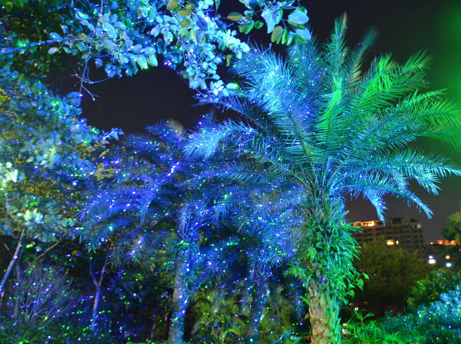 Garden Tree And Outdoor Wall Decoration Laser Lights For Holiday Lighting Outdoor Christmas Christmas Light Projector Laser Christmas Lights