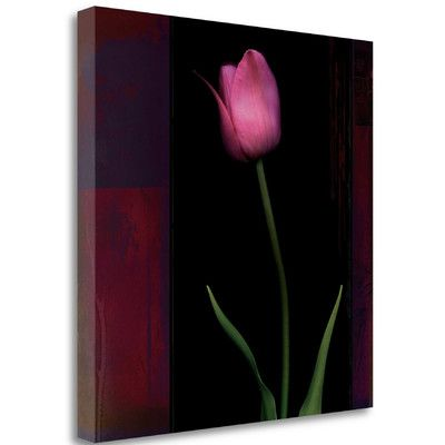 Tangletown Fine Art 'Red Tulip II' by Rick Filler Graphic Art on Wrapped Canvas