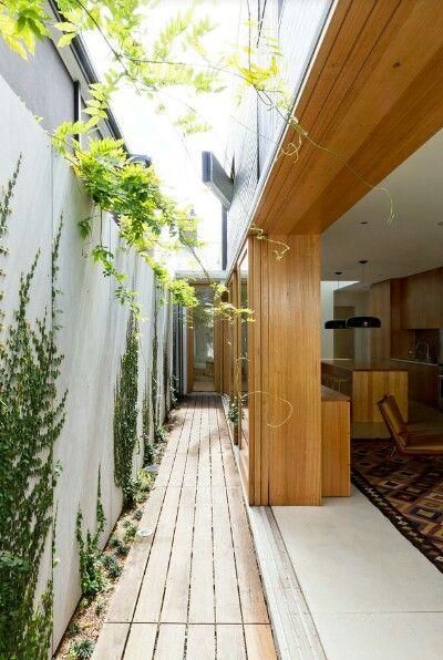 Vertical garden corridor | House exterior, Sydney house ... on Hhh Outdoor Living id=47094