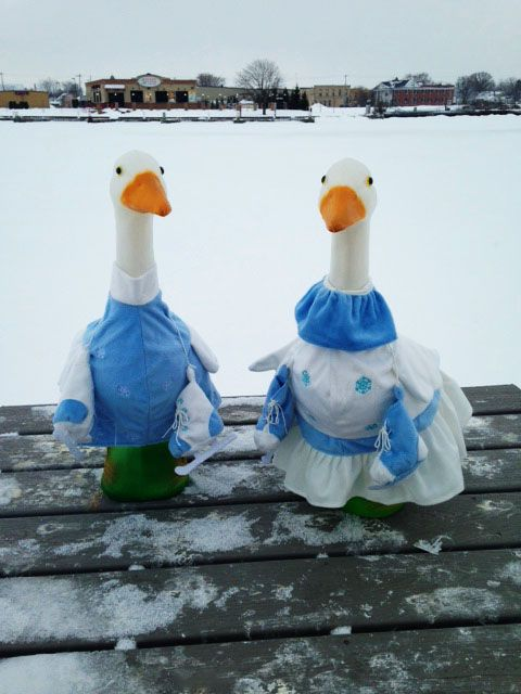 With it being so cold out our Geese decided to don some winter wear, and pick up their skates for a lovely couples skate on the frozen pond.