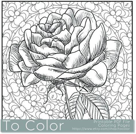 Printable Rose Coloring Page For Adults Pdf Jpg Instant By Tocolor Cvetochnye Raskraski Abstraktnye Raskraski Besplatnye Raskraski