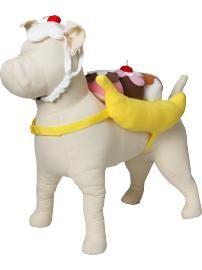 Banana Split dog costume! | Trick or Treat | Pinterest ...