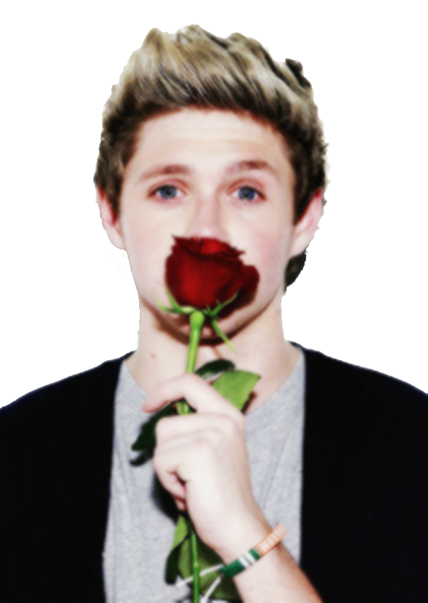Niall Horan Png By Xxprettyxx On Deviantart Fotos De Niall Horan Niall Horan Famosos