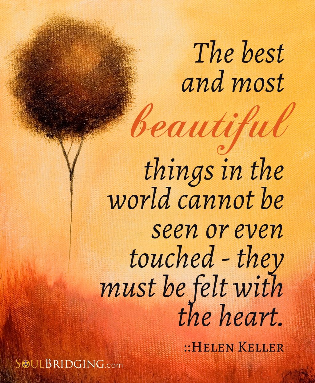 """""""The best most BEAUTIFUL things in the world cannot be ..."""