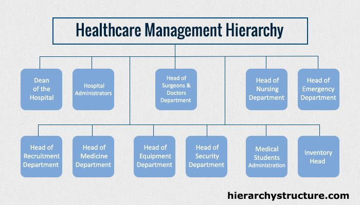 Healthcare Management Hierarchy Healthcare Management Healthcare Administration Career Healthcare Administration
