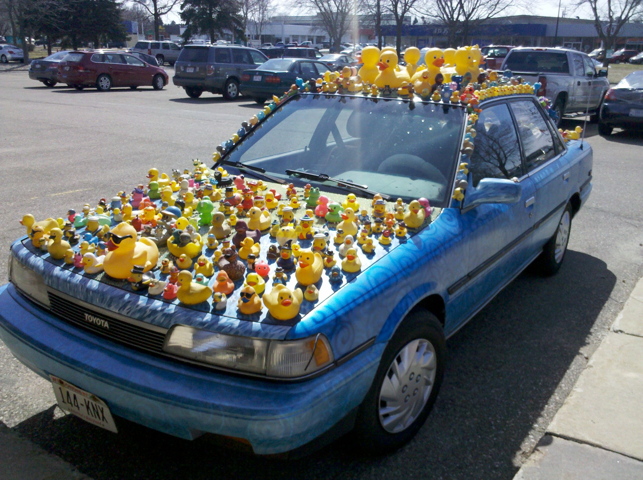 Used Cars Madison Wi >> Rubber Duckie Car Madison Wi Car Car Mods Used Cars