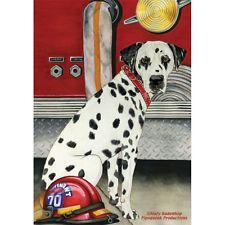 Dalmatian By A Beach Fire Dalmatian Fire House Dog Evergreen