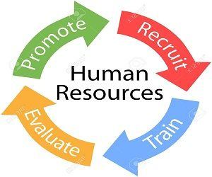 Connect With Human Resource Management Experts From Us Uk And
