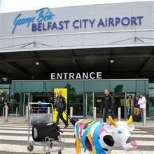 Cow Parade Arriving At George Best Belfast City Airport Belfast City Northern Ireland Northern Ireland Tourism