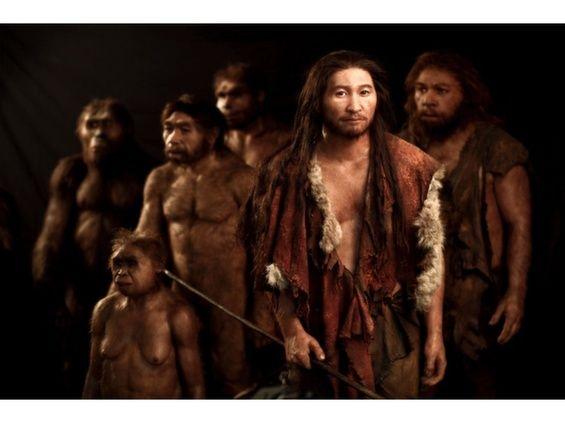 IdeaFixa » Como os humanos se pareciam há 3 milhões de anos atrás?