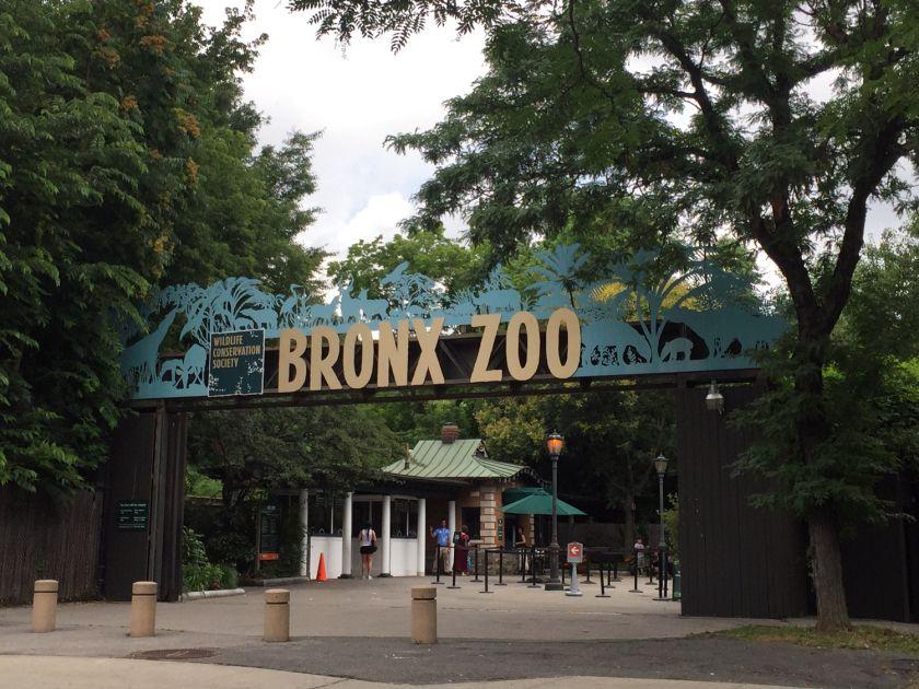 Pin On Zoo Ideas