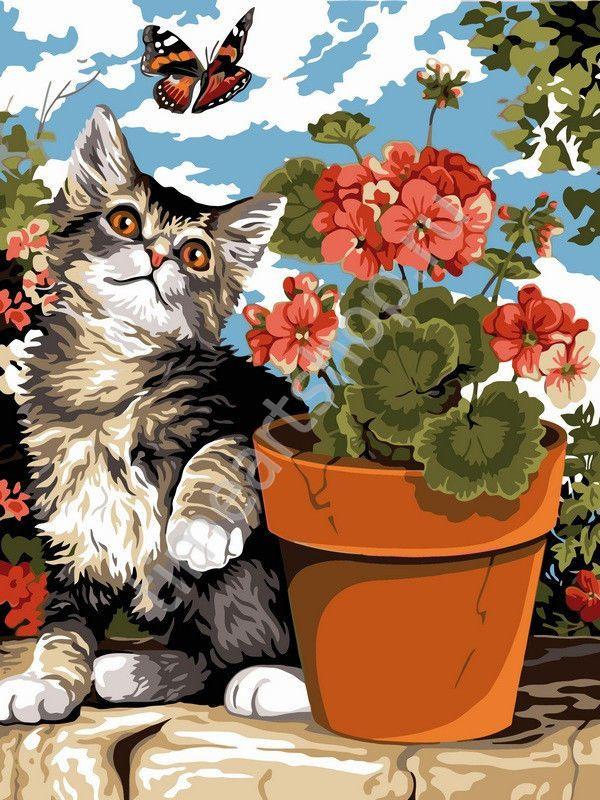 Игривый котик и герань 550 руб. картины раскраски по ...