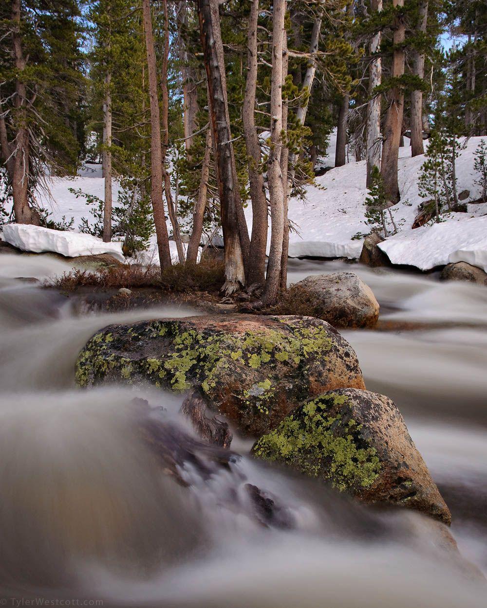 Dana Fork, Tuolumne River, Yosemite National Park, California, USA