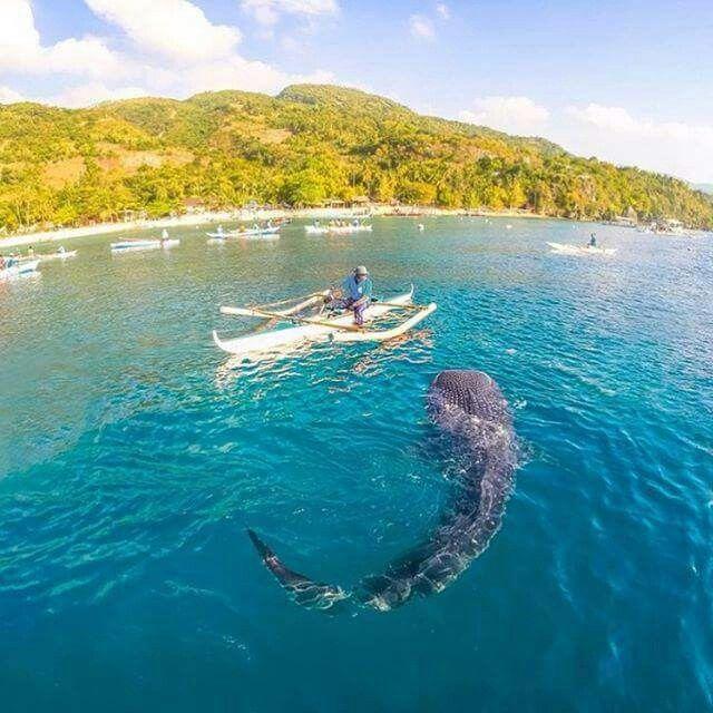 Beautiful Places Underwater: Pin De Godsin Abyss En God Lives Underwater