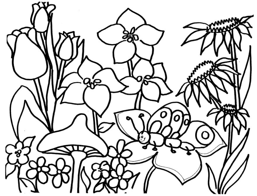 flower-garden-coloring-page | Colouring Pages | Pinterest